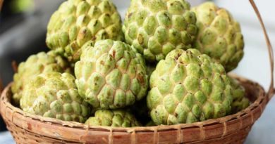 All You Need To Know About Custard Apple