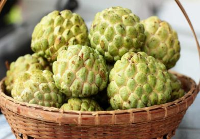 ALL YOU NEED TO KNOW ABOUT CUSTARD APPLE!!