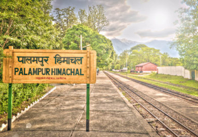 GET LOST TO PALAMPUR!!