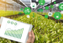 How AI technology can improve Agriculture Ecosystem