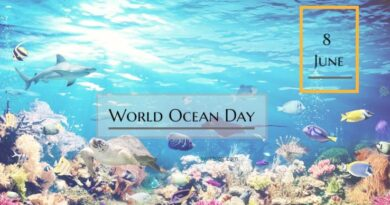 World Ocean Day 2020 Theme